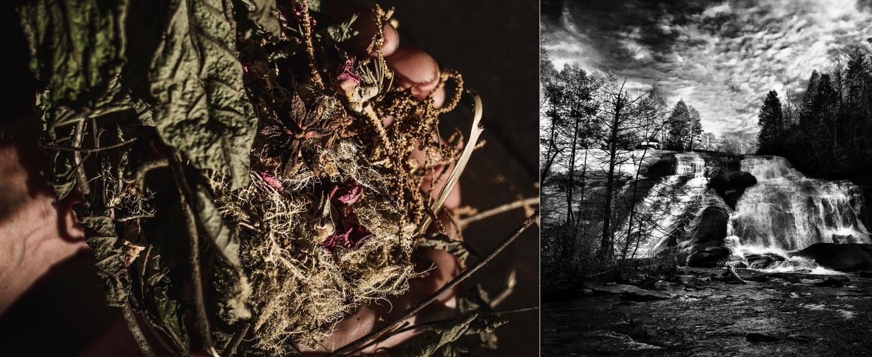 Eda Ryhne wild crafted in North Carolina
